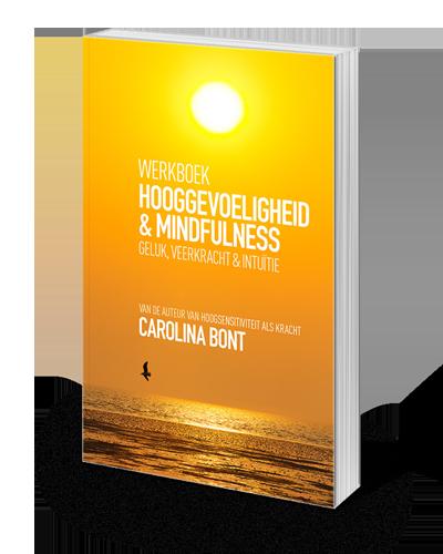 Werkboek hooggevoeligheid en mindfullness