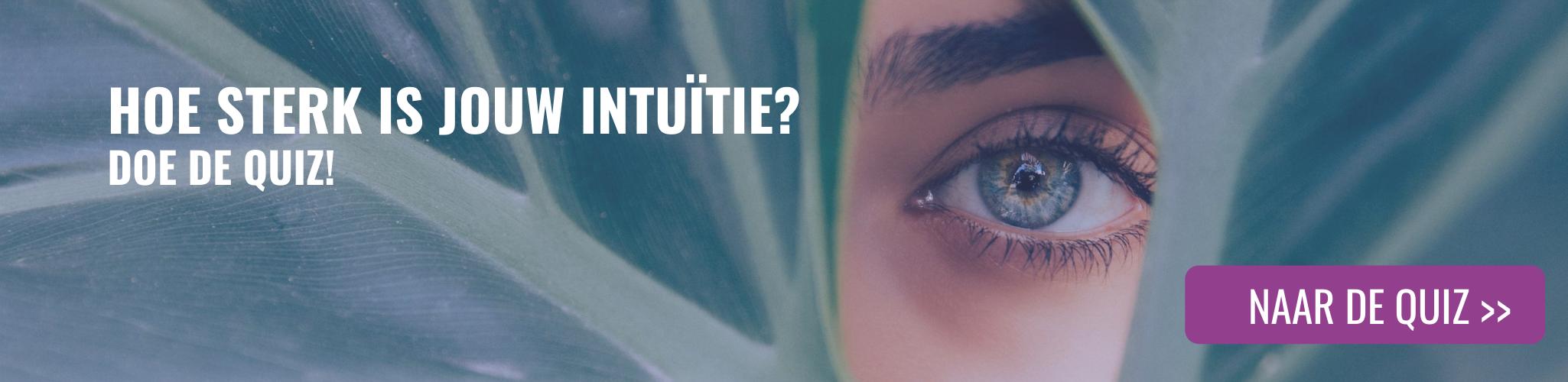 Intuitie Quiz